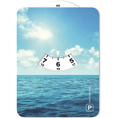 Parkkikiekko 029 Meri