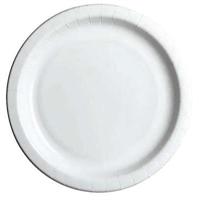 Kartonkilautanen Havi Pro Standard 22 cm valkoinen/50 kpl