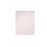 Taululehtiö - fläppipaperi 5X5 ruudut 60X85cm/50