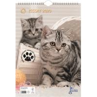 Kissat 2020 seinäkalenteri - Ajasto