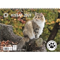 Kissat 2021 seinäkalenteri - Ajasto