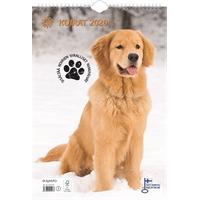 Koirat 2020 seinäkalenteri - Ajasto